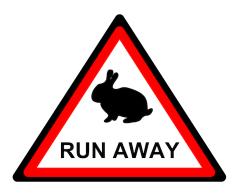 warning: attack rabbits ahead